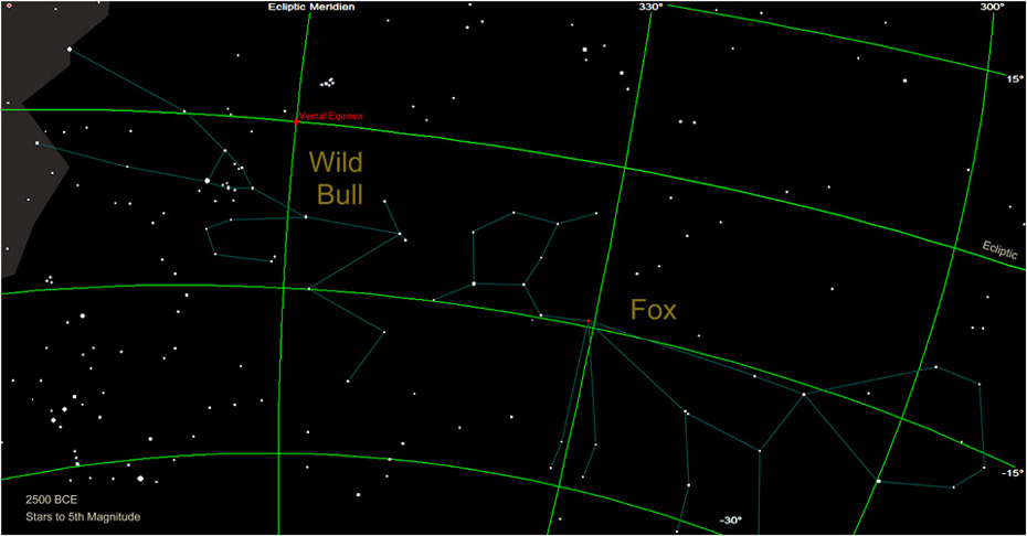 The Fox and Bull Constellations